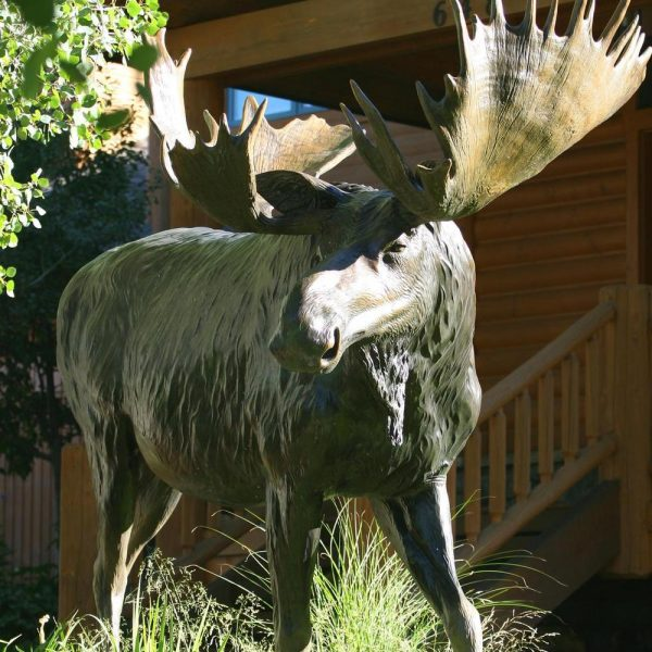 "Bull of the Woods<br>96""L 7H 2W - ed./6 - Wildlife Bronze Sculpture Monumental Wildlife Bronzes Life-size plus wildlife bronzes"