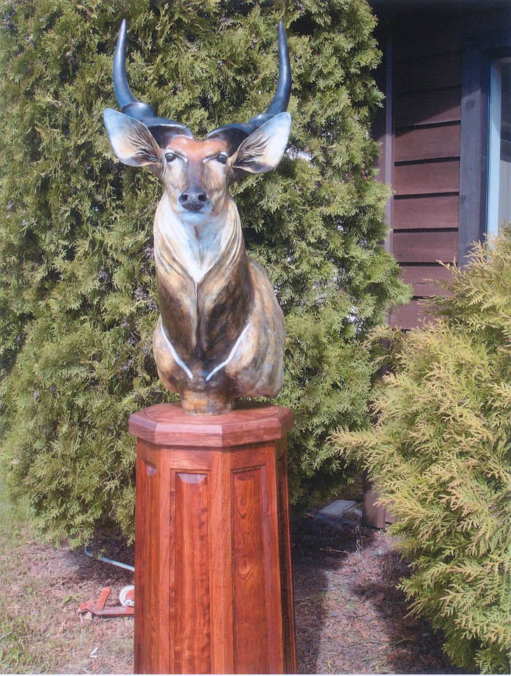 "Lord Derby 22""L 36""H 16""WPedestal: 38""H 17""W - Babinga Wood - ed./18Available without pedestal upon request. - Wildlife Bronze Sculpture"
